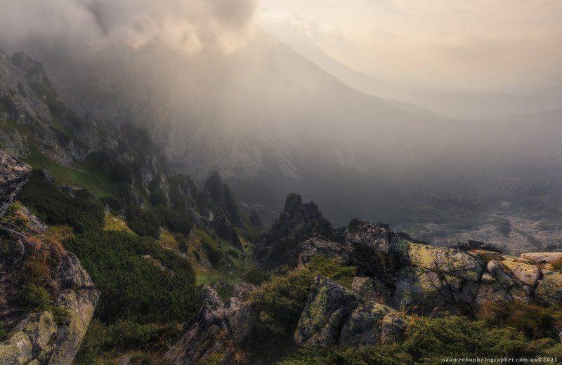 словакия, низкие, татры, туман, природа, горы, пейзаж, белый, лес, климат, туман, фон, синий, дерево, облако, красивый, горы, облака, живописные, высокие, трава, сцена, осень, погода, сосна, туманное, утро, зеленый, вершина, горный хребет Словакия. Высокие Татры. Утро на горе Predne Soliskophoto preview