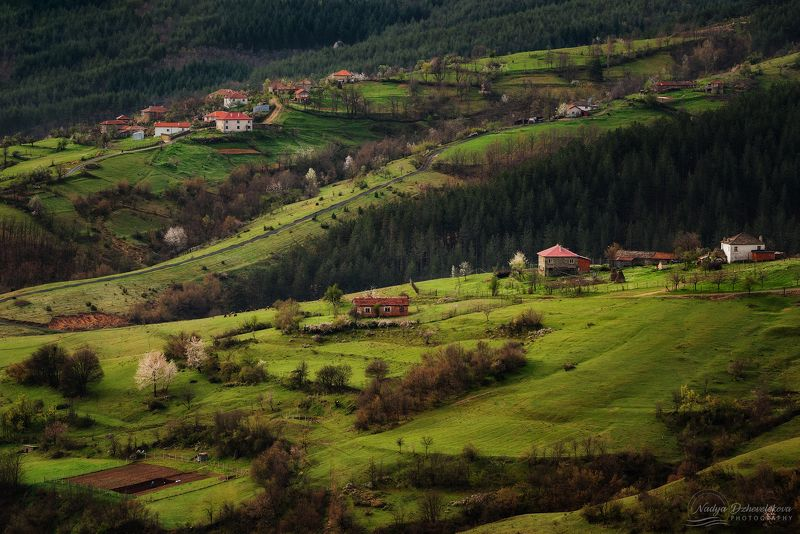 Rhodope Mountainphoto preview