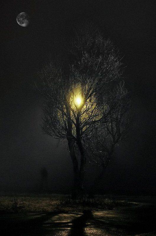 wake,mood,night,time,secrets,moon,alone, Seizure ©photo preview