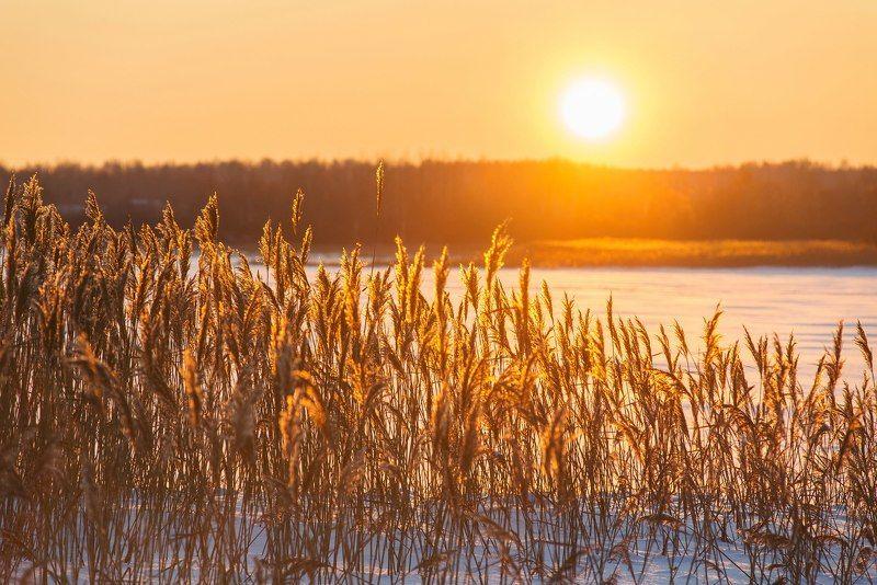 солнце красит нежным светомphoto preview