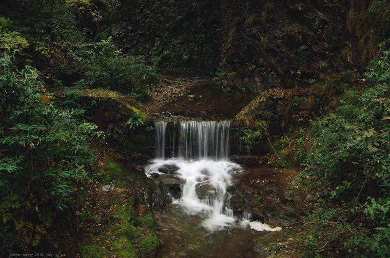 Италия, Альпы, горы,водопад, вода, лес, листва, зелень, Лесной водопадикphoto preview