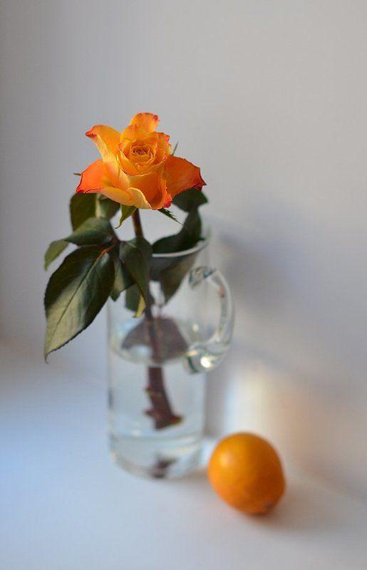 роза,графин,лемон photo preview