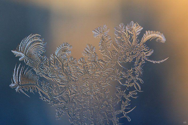 мороз, узоры, зима, окно Сказкаphoto preview