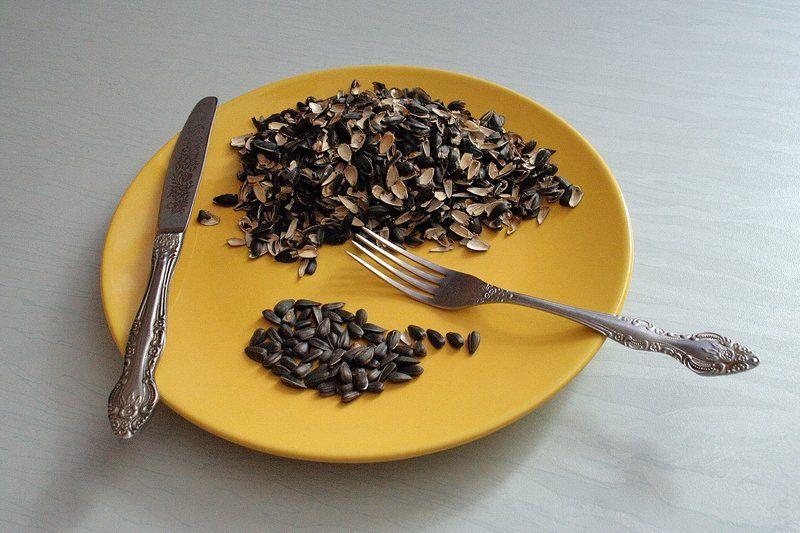 Завтрак бедного интеллигентаphoto preview