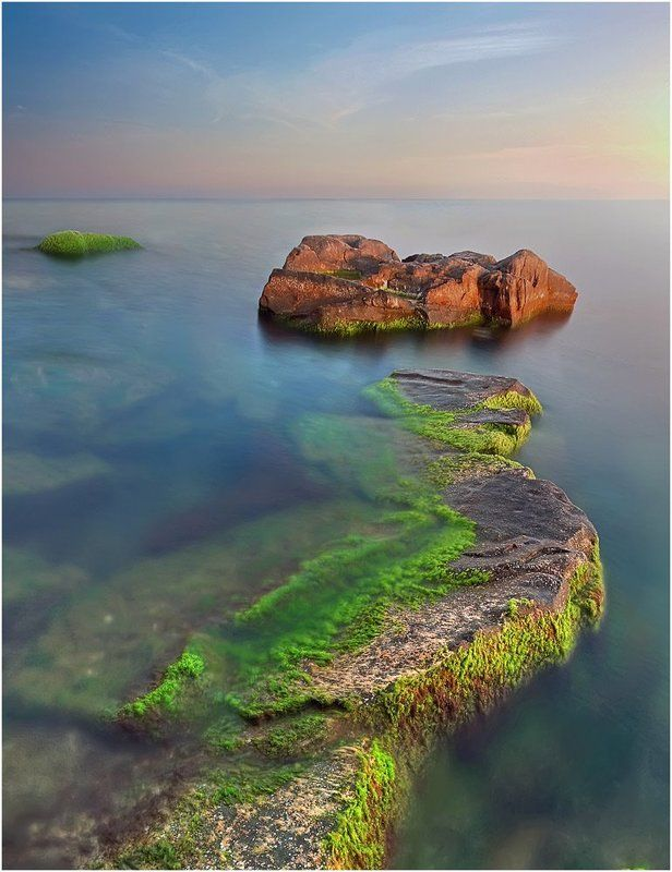 рассвет, море, камень, водоросли ***photo preview