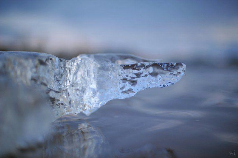 лёд, весна Крокодилphoto preview