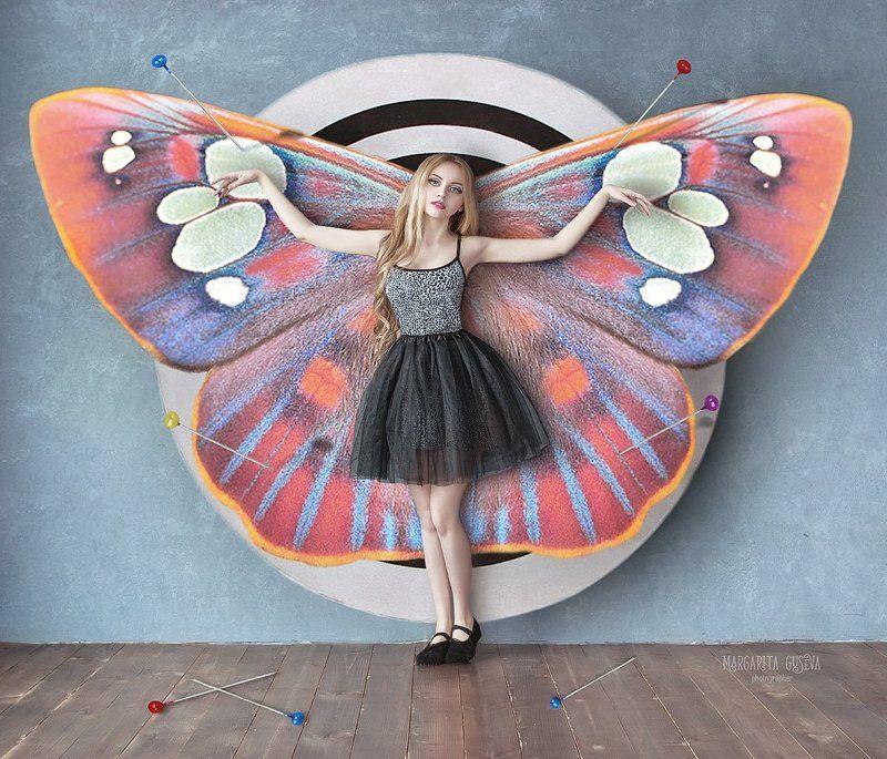 фотограф Маргарита Гусева, Margarita Guseva, бабочка \