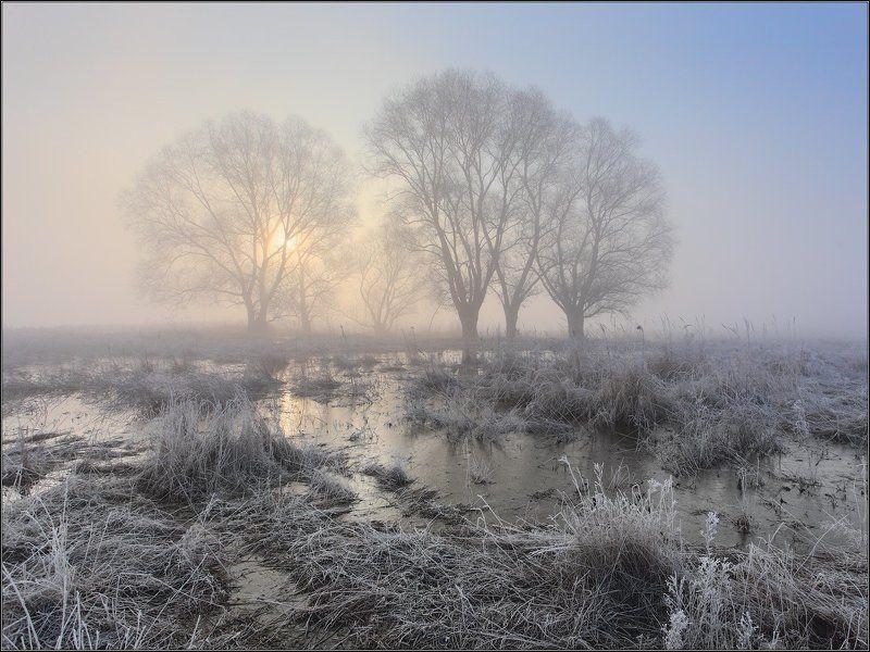 Туман солнце половодье Половодье на р.Удыphoto preview