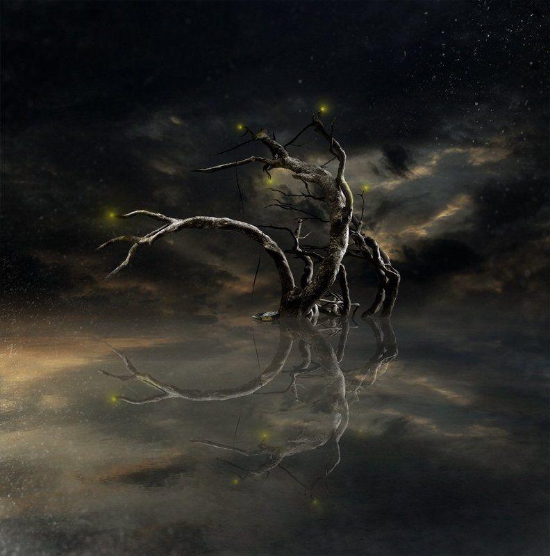 дерево, пейзаж Тернистый свет...photo preview