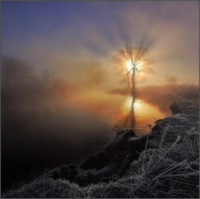 Солнце река туман ***photo preview