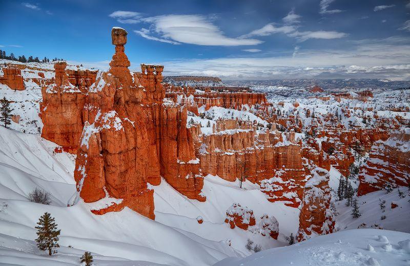 зима,снег,bryce canyon,пейзаж Bryce Canyonphoto preview