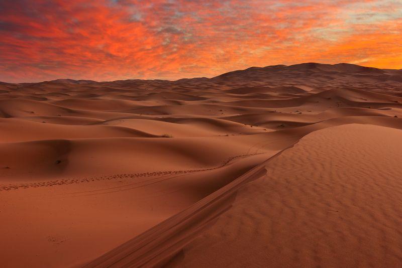 Рассвет в Сахареphoto preview