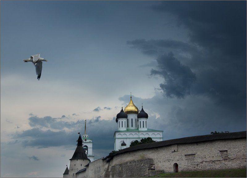 Псков кремль туча гроза чайка К грозеphoto preview