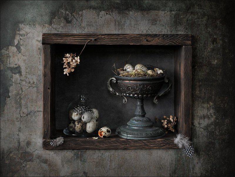 натюрморт , перепелиные перья, гнездо, яйцо Перепелино-гнездовой 2photo preview