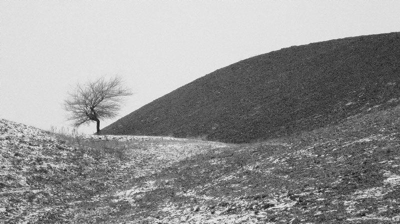 природа, первый снег, одиночество одиночество...photo preview