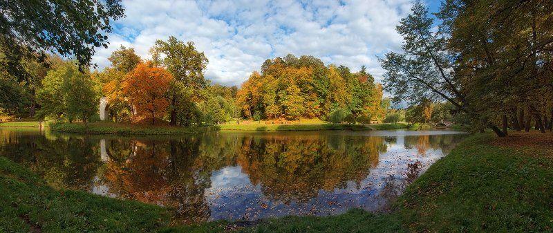 царицыно, осень, парк, пруд Молодая осеньphoto preview