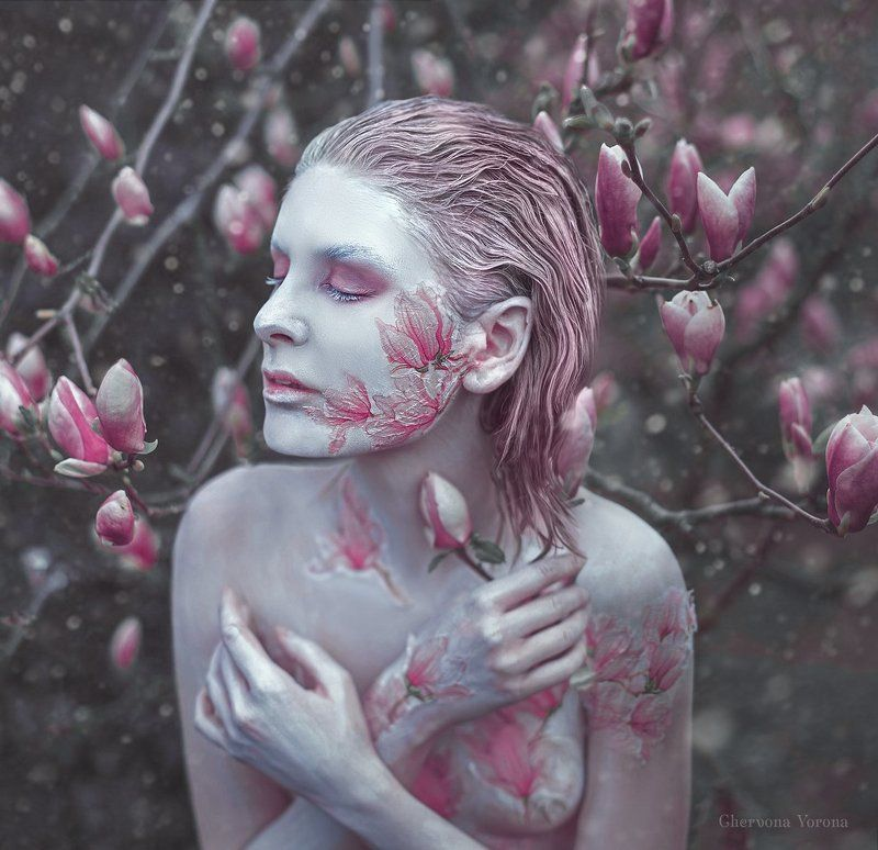 весна, магнолии, грим, снег, арт Cold Springphoto preview