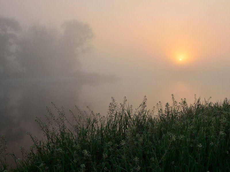 Ода тумануphoto preview