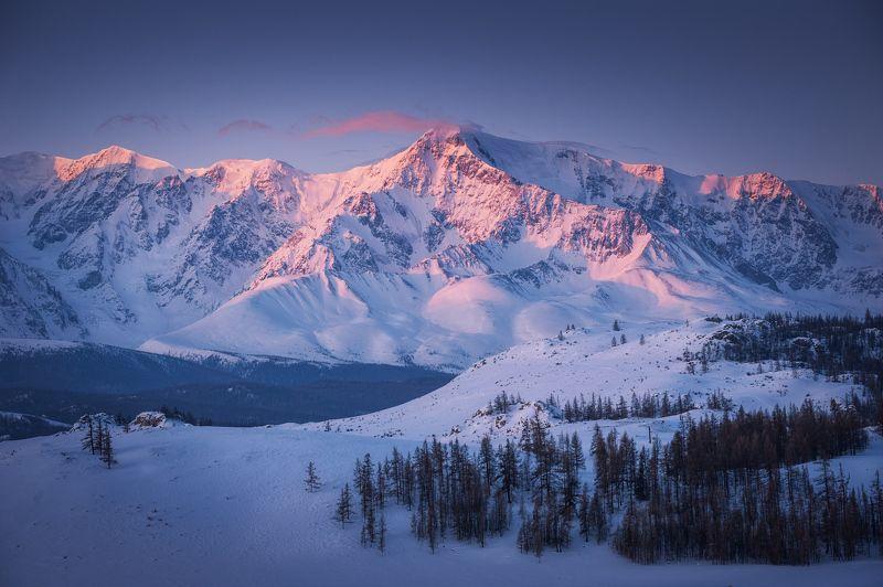 Горы Алтай рассвет зима снег Холодный рассветphoto preview