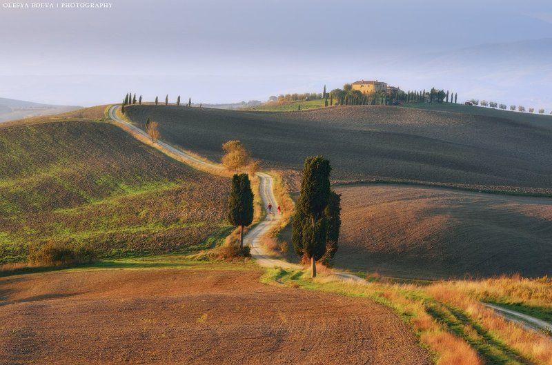 Тоскана, осень, поля, Италия, Italy, Tuscany, autumn, fields Осеннее утро в Тосканеphoto preview