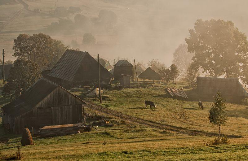 карпаты,утро, хутор, сенечив утро на хуторе...photo preview