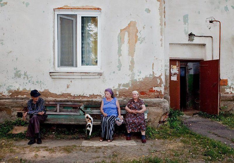 люди Трое под окошком и кошка.photo preview