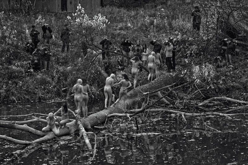 КАРАКАН 2010: Тихий Омутphoto preview