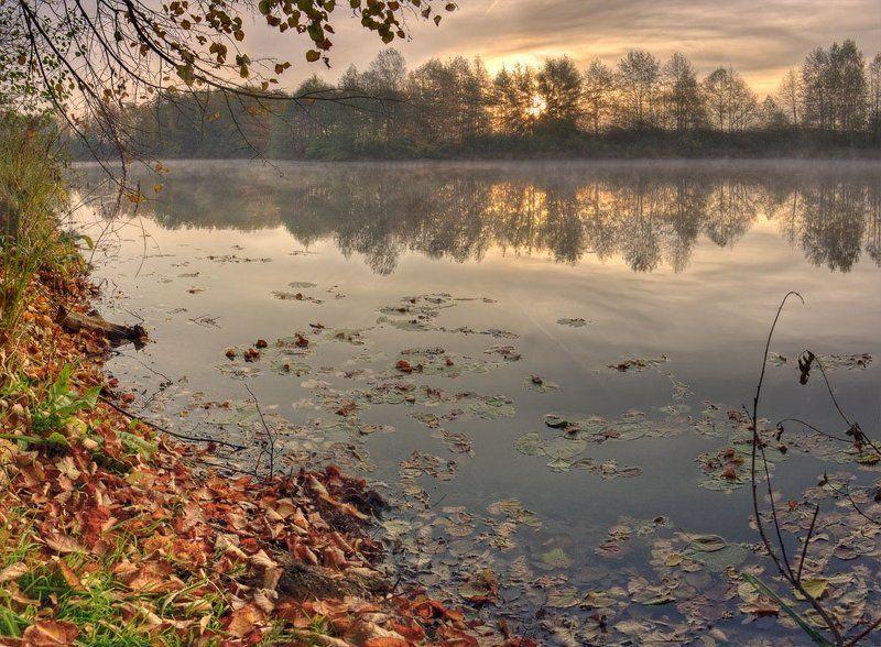 рассвет, утро, осень, пейзаж осеньphoto preview