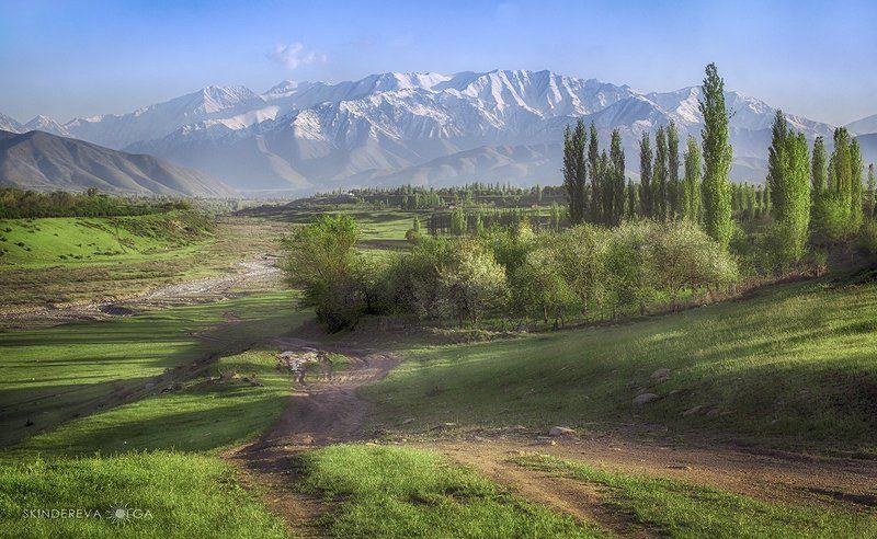 кыргызстан, кепер-арык Аул Кепер-Арыкphoto preview