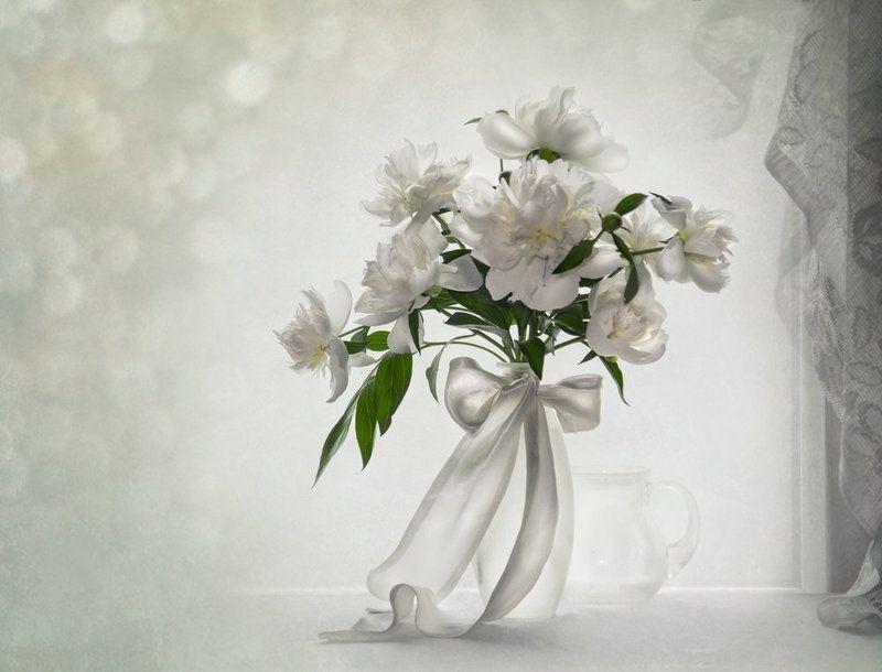 белые пионы, весна,май, настроение,натюрморт,нежность Бело - с - Нежные....photo preview