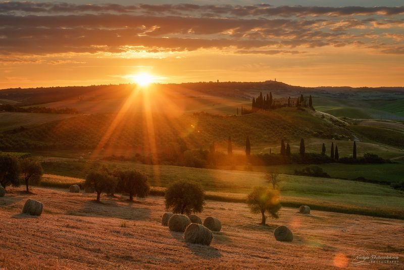 sunrise, sun, sunlight, tuscany, field Early morning at Tuscanyphoto preview