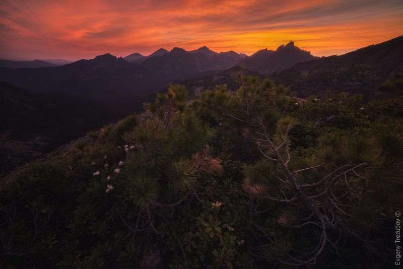 ергаки, природа, пейзаж, саяны, спящий саян, утро, облака, горы, скалы, лето, сибирь, рассвет, заря Кровавый рассвет в природном парке Ергаки.photo preview