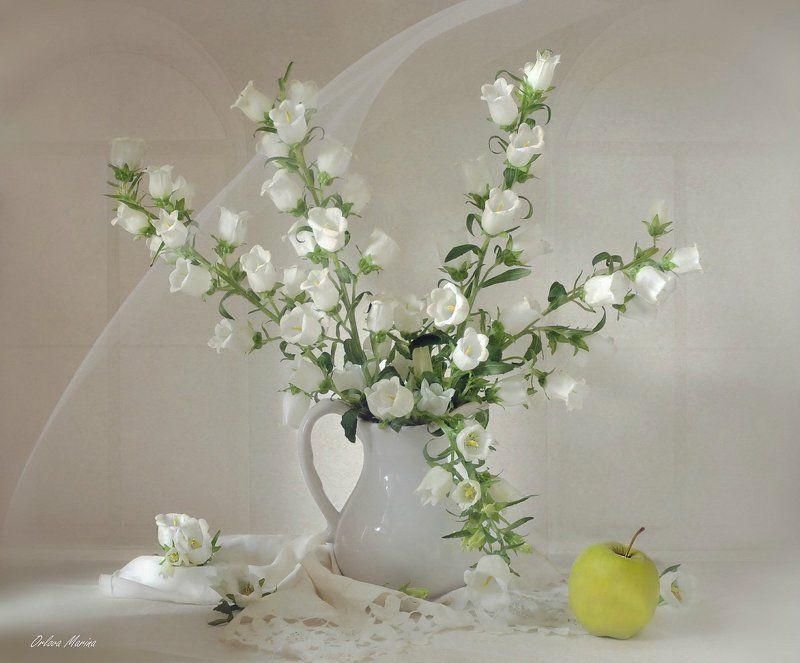 лето цветы утро С белыми колокольчикамиphoto preview