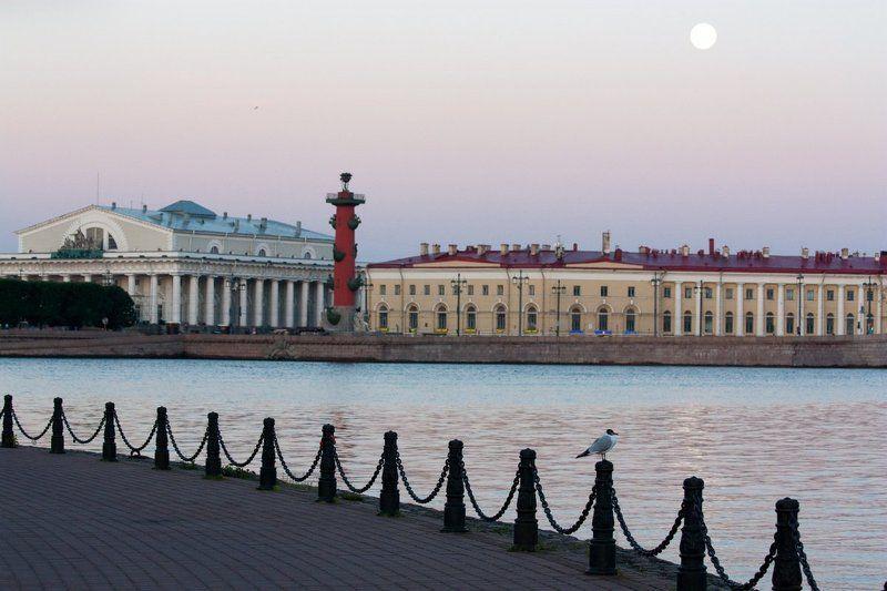 санкт-петербург Утро Петербургаphoto preview