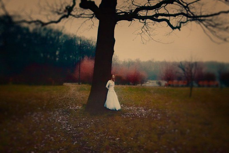 forest, mist, lady, fog, ghost, cold Stealing beautyphoto preview