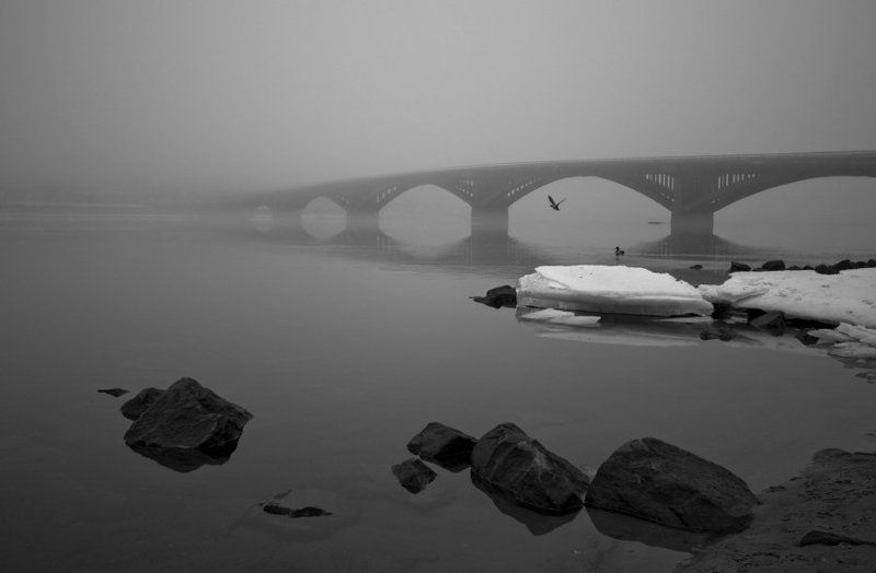 zen at the bridgephoto preview