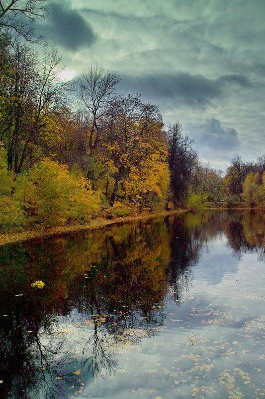 осень, андреевские пруды Осень на Андреевских прудахphoto preview