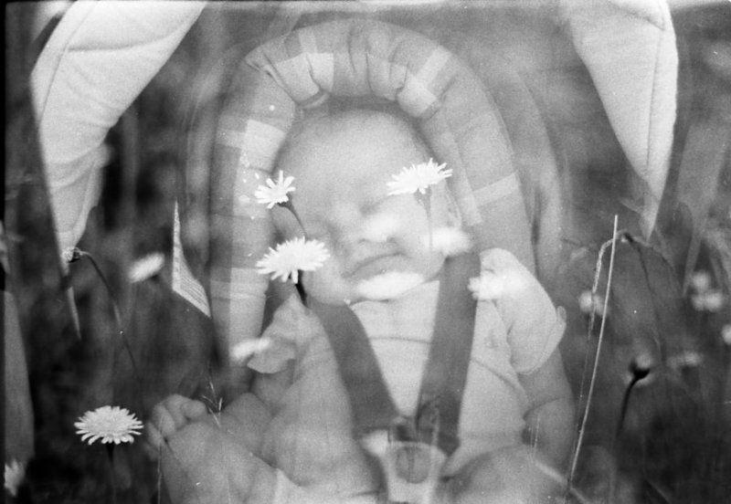boy,film, rollei retro 100, iso 100,сон,flowers,doubleexpo,double Только это просто сон ...photo preview
