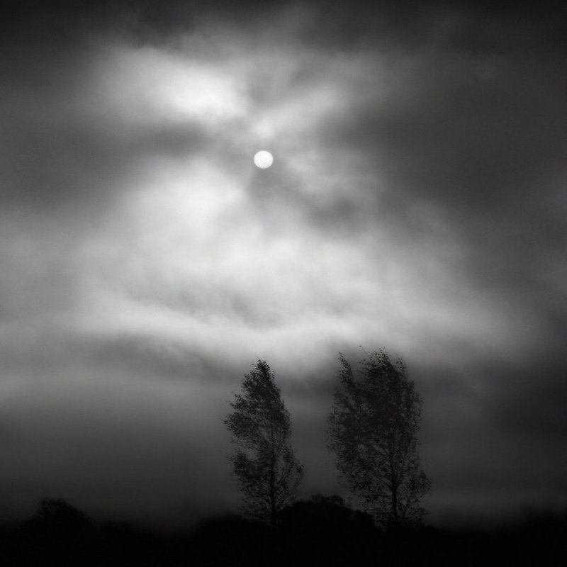 Утренний туман и солнце. Октябрь.photo preview