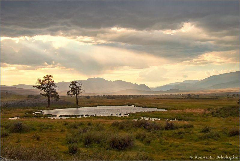 алтай, горы, курайский хребет, чуйская степь, июль, ёкитыт Ёкитытphoto preview