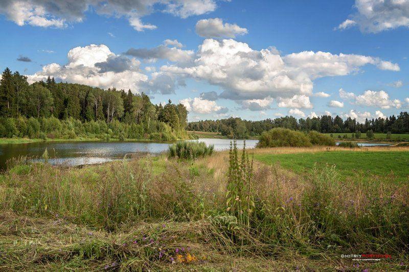 пейзаж,природа,лето,поле,озеро,облака,небо, Среди полей Подмосковья.photo preview
