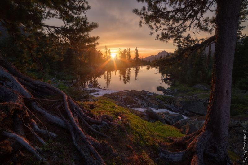 ергаки, природа, пейзаж, саяны, облака, горы, лето, сибирь, вечер, закат, небо, каменный замок, лазурное, красноярск, западные саяны, лес, деревья, солнце Корни саянских горphoto preview