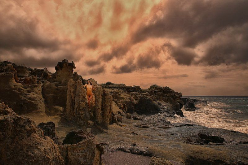 fossil, fossil forest, sea, clouds, rock, stone, stoned trees, Mystikphoto preview