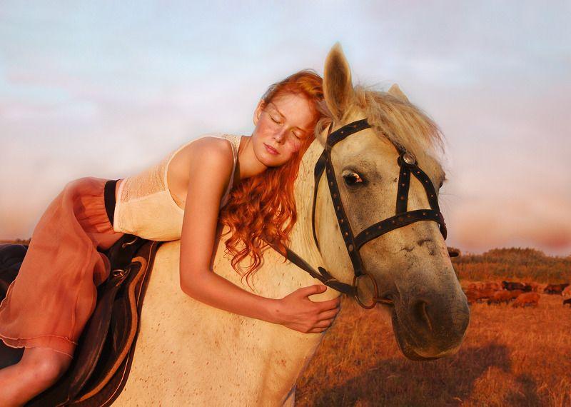 Красивые и лошадиphoto preview