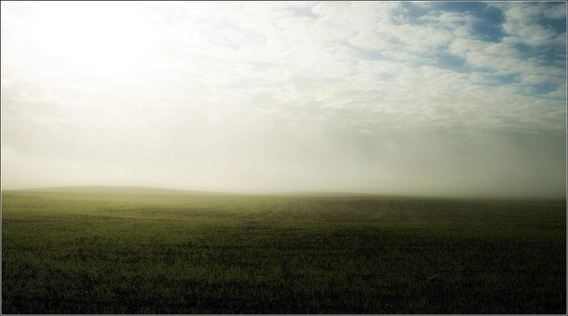 туман, mist, fog, lithuania, morning, My black-and-white life - \