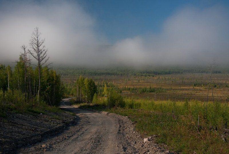 тайга, пейзажи, август 2010, софийск, хабаровский край тайга...photo preview