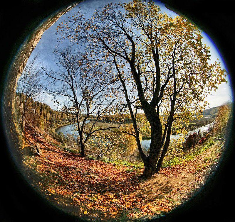 Вот такая ОСЕНЬ получилась на ПЕЛЕНГ-8photo preview