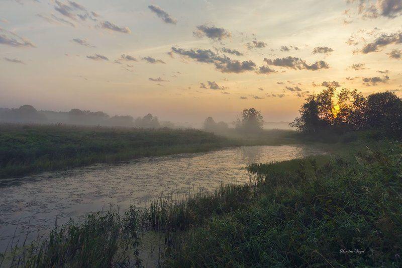 рассвет, река, туман, паутина Рассвет на реке Тьмаphoto preview