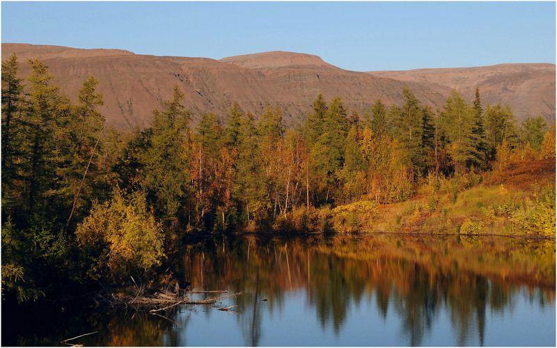Таймыр,сентябрь,осень Осенние зарисовкиphoto preview