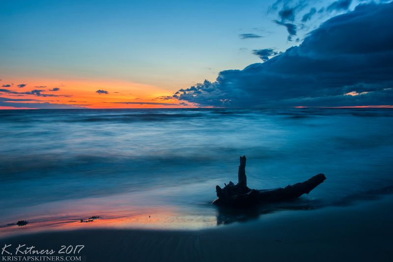 sea seascape water sky clouds branch reflection sunset evening latvia The Old Branchphoto preview